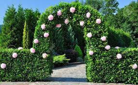 Wedding Ceremony Arch Wedding Ceremony Arch With Flowers Near Shrub And Tree Stock