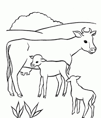 cute baby cow coloring pages