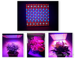 red and blue led grow lights 196leds red blue full spectrum 45w plant grow light led grow light