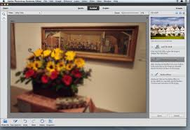 digital imaging software review adobe photoshop premiere elements 11