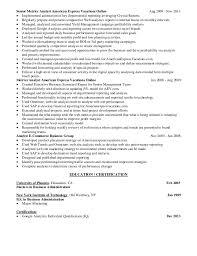 Sample Resume For Digital Marketing Manager by Neil Shapiro Resume Digital Marketing Google Analytics Expert