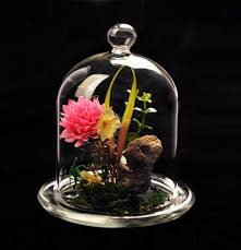 crystal glass cover flower vase home decor hand blown diy tabletop