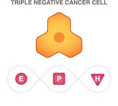triple negative breast cancer national breast cancer foundation