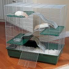 Large Ferret Cage Kaytee Multi Level Exotics Cage Drsfostersmith Com