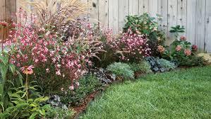 How To Start A Flower Garden In Your Backyard 20 Best Perennial Flowers Sunset