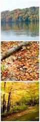 174 best autumn images on pinterest autumn fall autumn leaves