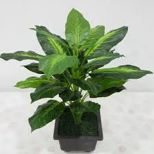 50cm lifelike leaves evergreen artificial plant simulation flowers