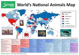 Animal World Map by National Animals Of The World Interactive Infographic