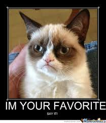 Favorite Meme - im your favorite by vdk meme center