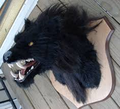 Big Scary Halloween Decorations by Halloween Decor Werewolf Head 7 Steps With Pictures