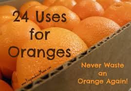 what to do with an 24 uses for oranges never waste another orange