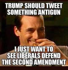Second Amendment Meme - sad the only thing that could get liberals to defend the second