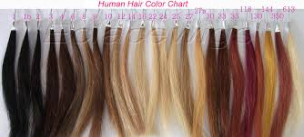 hair color chart human hair color chart hair color chart