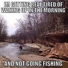 Funny Fish Memes - 78 best fishing memes images on pinterest fishing humor fishing