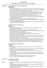 director of operations resume director clinical operations resume sles velvet