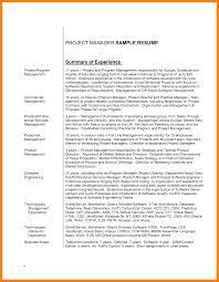 Sample Resume Product Manager Resume Summary Marketing Professional