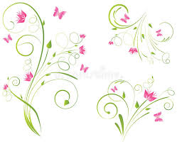 florals designs and butterflies stock vector illustration of
