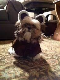 Ewok Dog Halloween Costume Ewok Pet Costume Funny Pet Costumes Pet Costumes