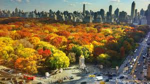 best things to do in the fall in nyc including events