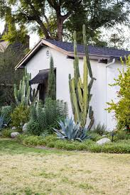 11 ideas to steal from drought tolerant gardens gardenista