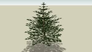 small fir tree 3d warehouse