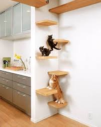 cat wall furniture wall shelves design wall shelves for cats to climb curved cat