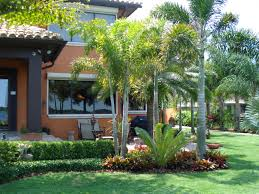 Front Landscaping Ideas by Tropical Front Yard Landscaping Ideas With Palm Trees This For