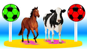 learn domestic animals cow horse cartoon animal sounds u0026 colors
