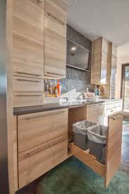 Out Kitchen Designs by Kitchen Design Idea Hide Pull Out Trash Bins In Your Cabinetry