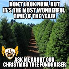 Tree Meme - wood mountain christmas tree fundraiser tvhs golden valley regiment