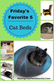 best 25 heated cat bed ideas on pinterest diy cat bed cat