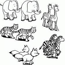 imagenes de animales carnivoros para imprimir dibujos de animales carnivoros herbivoros y omnivoros para