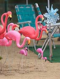 2846 best keep calm flamingos images on pink