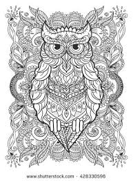ornament owl vector beautiful illustration owl stock vector