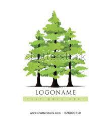pine tree pine forest vector illustration stock vector 626000519