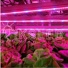 red and blue led grow lights 15pcs lot blue and red led strip grow light red blue 5 1 white red 2