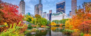 cheap flights to new york nyc from 79 kayak