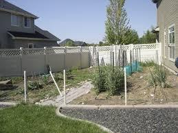 idaho vegetable garden backyard garden peas brocolli beans