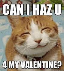Be My Valentine Meme - 20 cute and funny valentine s day memes word porn quotes love