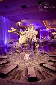 18 best peach uplighting images on pinterest bridal parties
