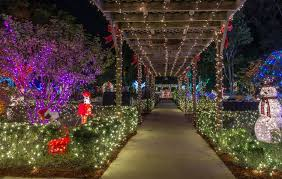 Pictures Of Christmas Lights by Christmas Lights Best In West Palm Beach Jupiter Lake Worth