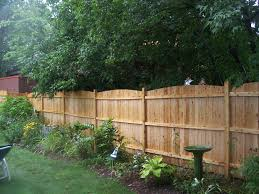 popular of fenced backyard landscaping ideas easy garden ideas