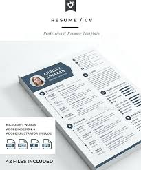 infographic style resume template free all time best premium