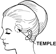 Behind Meaning Temple Anatomy Wikipedia