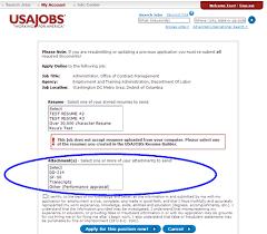 Resume Templates Usa Sample Resume Usa Vibrant Us Resume Format 8 Usa Jobs Resume