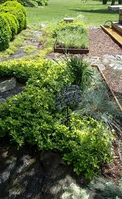 perennial herb garden layout garden designs gardens u0026 turf