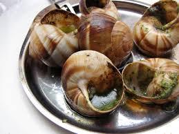 escargot cuisiné cuisine escargot with pesto sta travel food