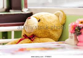Bear On The Chair Teddy Bear On Chair Stock Photos U0026 Teddy Bear On Chair Stock