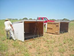 Shed Designs Goat Shelter Plans U2013 What Must You Look Out For When Raising Goats