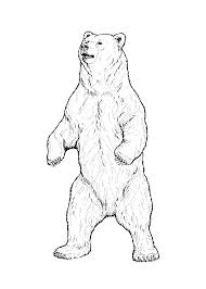 grizzly bear coloring pages getcoloringpages com